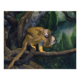 Squirrel Monkey Mother and Baby Photo Print