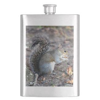 Squirrel Munching on an Acorn Hip Flask