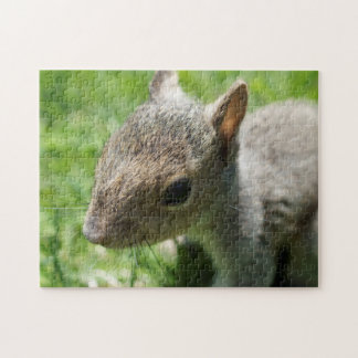 Squirrely Squirrel, 11x14 Photo Puzzle w/ Gift Box