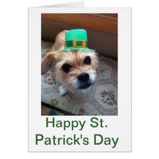 St. Patrick's Puppy Greeting Card
