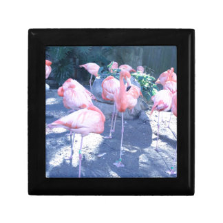 Standing Flamingo Gift Box
