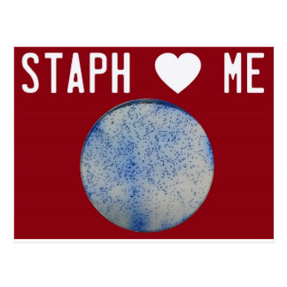 Staph Love Me red Postcard