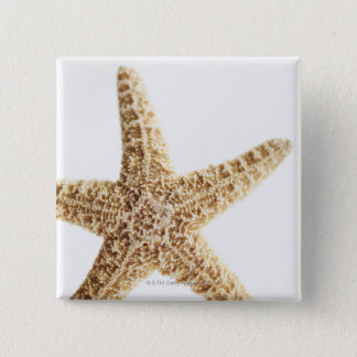 Star fish 15 cm square badge