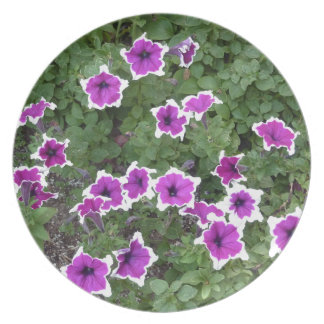 Star Flowers Party Plate