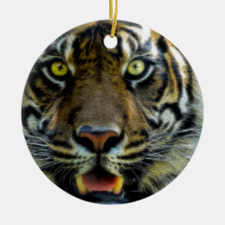 Stared Down By A Tiger Round Ceramic Decoration