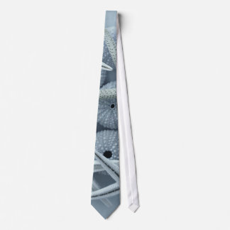 Starfish and Sea urchins tie