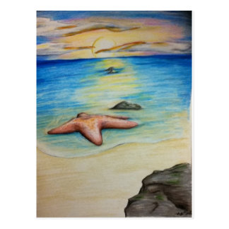 Starfish and the Shore Postcard