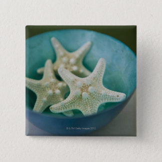 Starfish in bowl 15 cm square badge