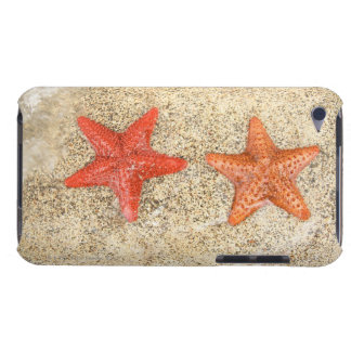 starfish on the beach, at the edge of the ocean iPod Case-Mate case
