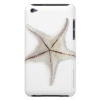 Starfish skeleton, close-up iPod Case-Mate cases