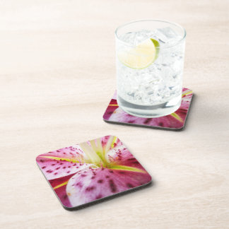 Stargazer Lily Bright Magenta Floral Coaster