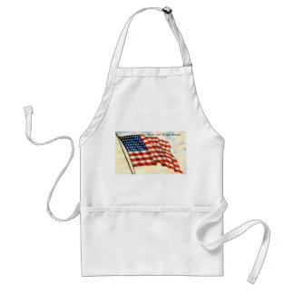 Stars and Stripes Forever American Flag Standard Apron