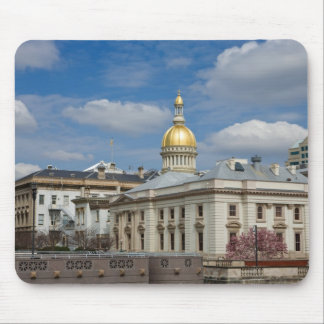 State Capitol at Trenton, NJ Mouse Pad