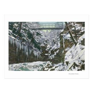 State Park Gorge Suspension Bridge View in Postcard