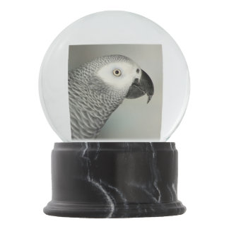 Stately African Grey Parrot Snow Globe