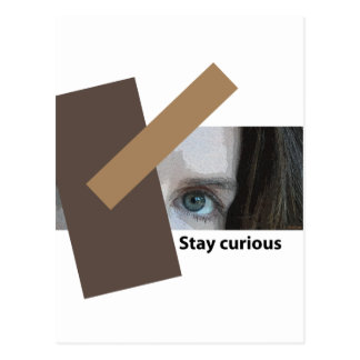 Stay Curious Post Cards