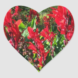 Sticker Bright Red Canna Flowers Blooms Heart Pho