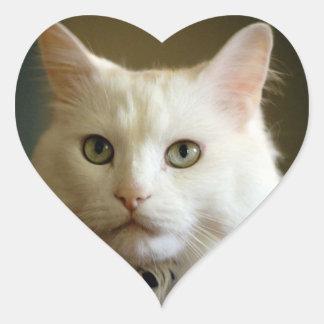 STICKER Heart Love beautiful white cat cute sweet