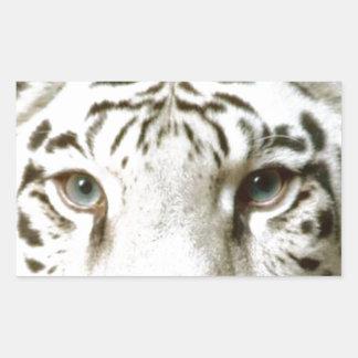 Sticker Wildlife White Tiger Eyes Intense Stare