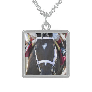 Stopchargingmaria victorious in her first race. sterling silver necklace