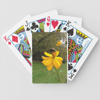 Stopping for a sip bicycle playing cards