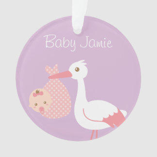 Stork Delivers cute Baby Girl Nursery Room Decor Ornament