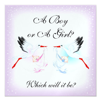 Storks and Babies Baby Gender Reveal Party Invit Card