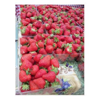 Strawberry Bunch Postcard