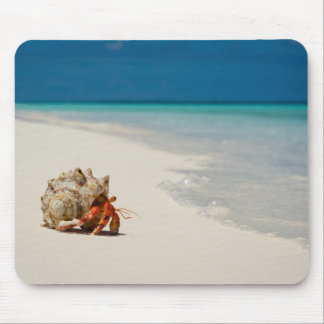 Strawberry Hermit Crab | Coenobita Perlatus Mouse Pad