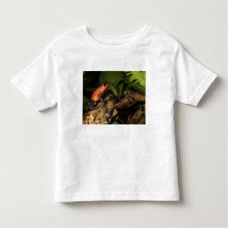 Strawberry Poison-dart frog (Dendrobates 2 Toddler T-Shirt
