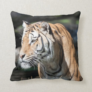 strong tiger cushion