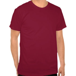 STS U23 T-Shirt