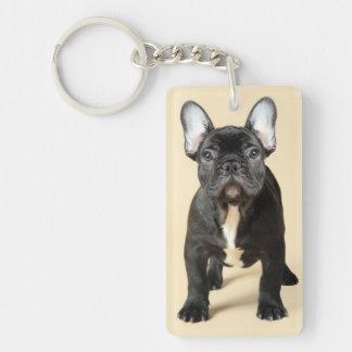 Studio portrait of French bulldog puppy standing Key Ring