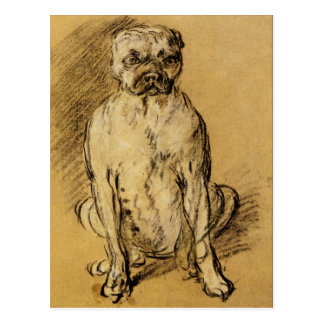 Study of a Bulldog by Thomas Gainsborough Postcard