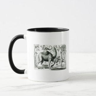 Study of Animals and Flowers, engraved Mug