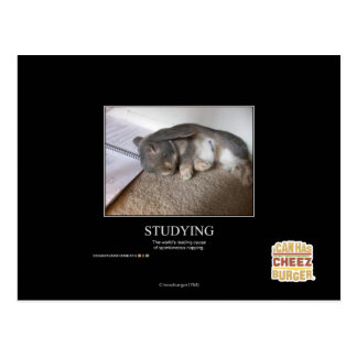 Studying Postcard