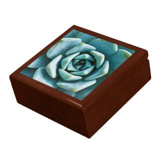 Succulent Closeup Gift Box