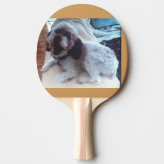 Sugar's Ping-Pong collection paddle