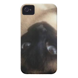 Sulley300.jpg iPhone 4 Case-Mate Case