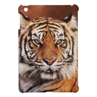 Sumatran Tiger, Panthera tigris iPad Mini Cover