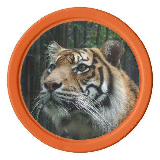 Sumatran Tiger Poker Chip