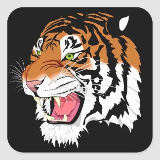 Sumatran tiger square sticker