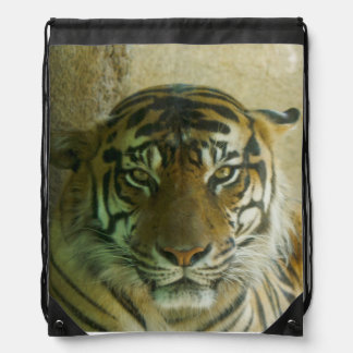 Sumatran Tigress Drawstring Backpack