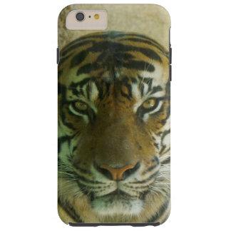 Sumatran Tigress Phone Case