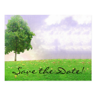 "Summer/Autumn Tree ""Save the Date"" Postcard"