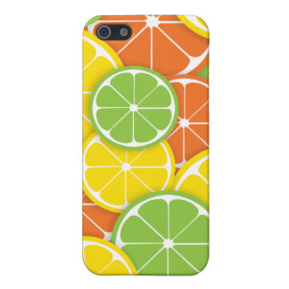 Summer citrus fruit lemon orange lime slices iPhone 5 cover