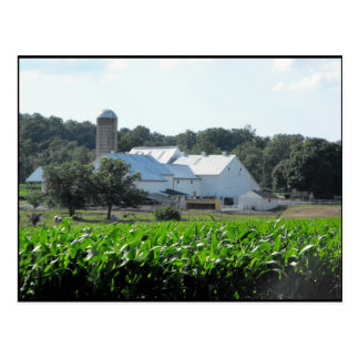 ~ Summer in Lancaster County ~ 46 Post Card