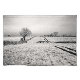 Summer Lines Landscape Placemat
