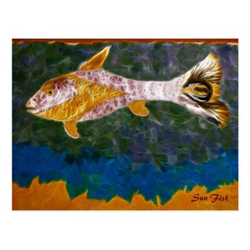 Sun Fish Postcard