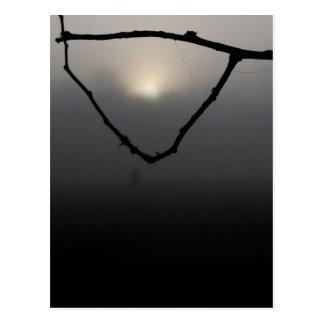 sun in fog net postcard